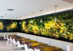 Greenwall: creëer een groene ruimte